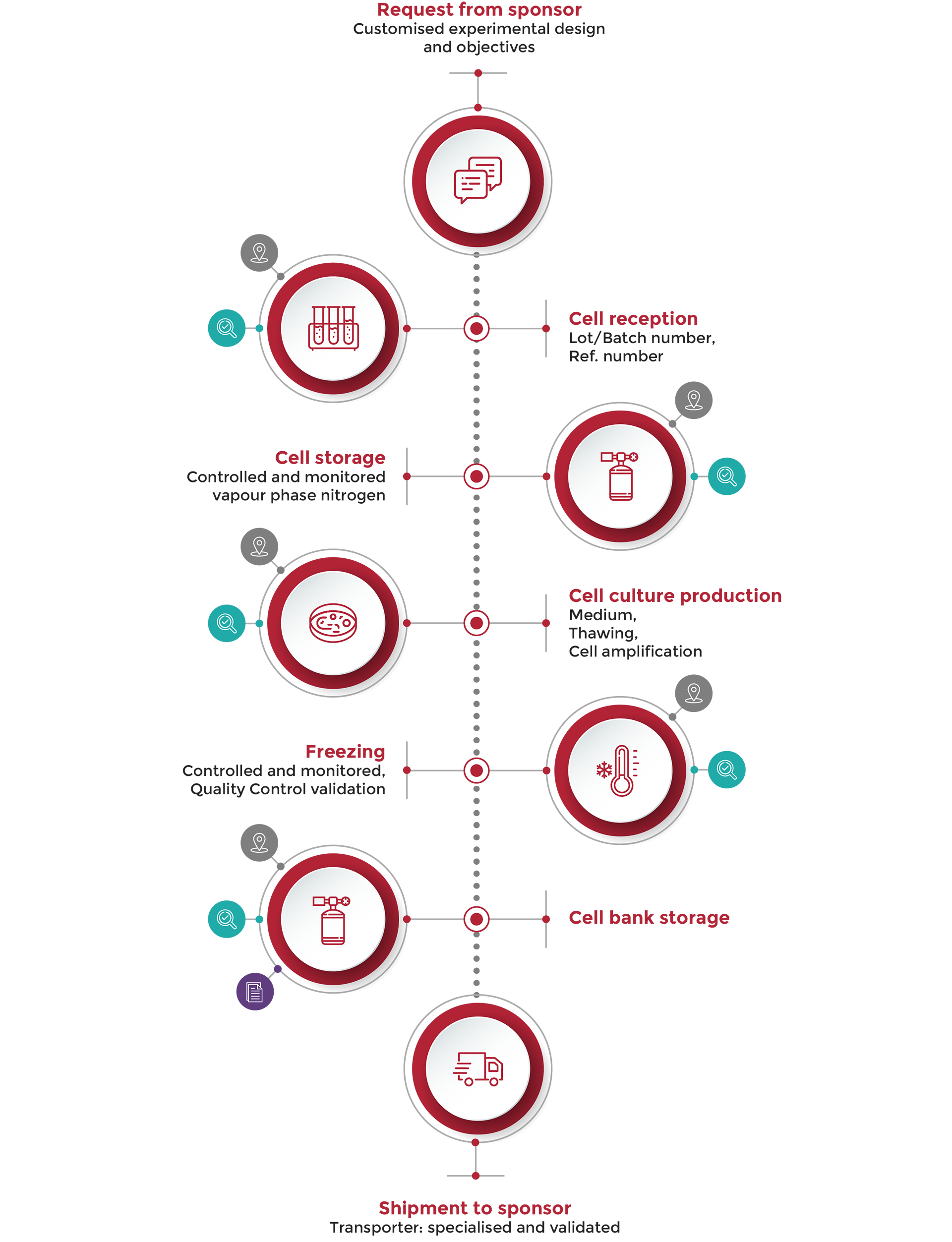 human-cell-design-schema-design-process-mobile-image
