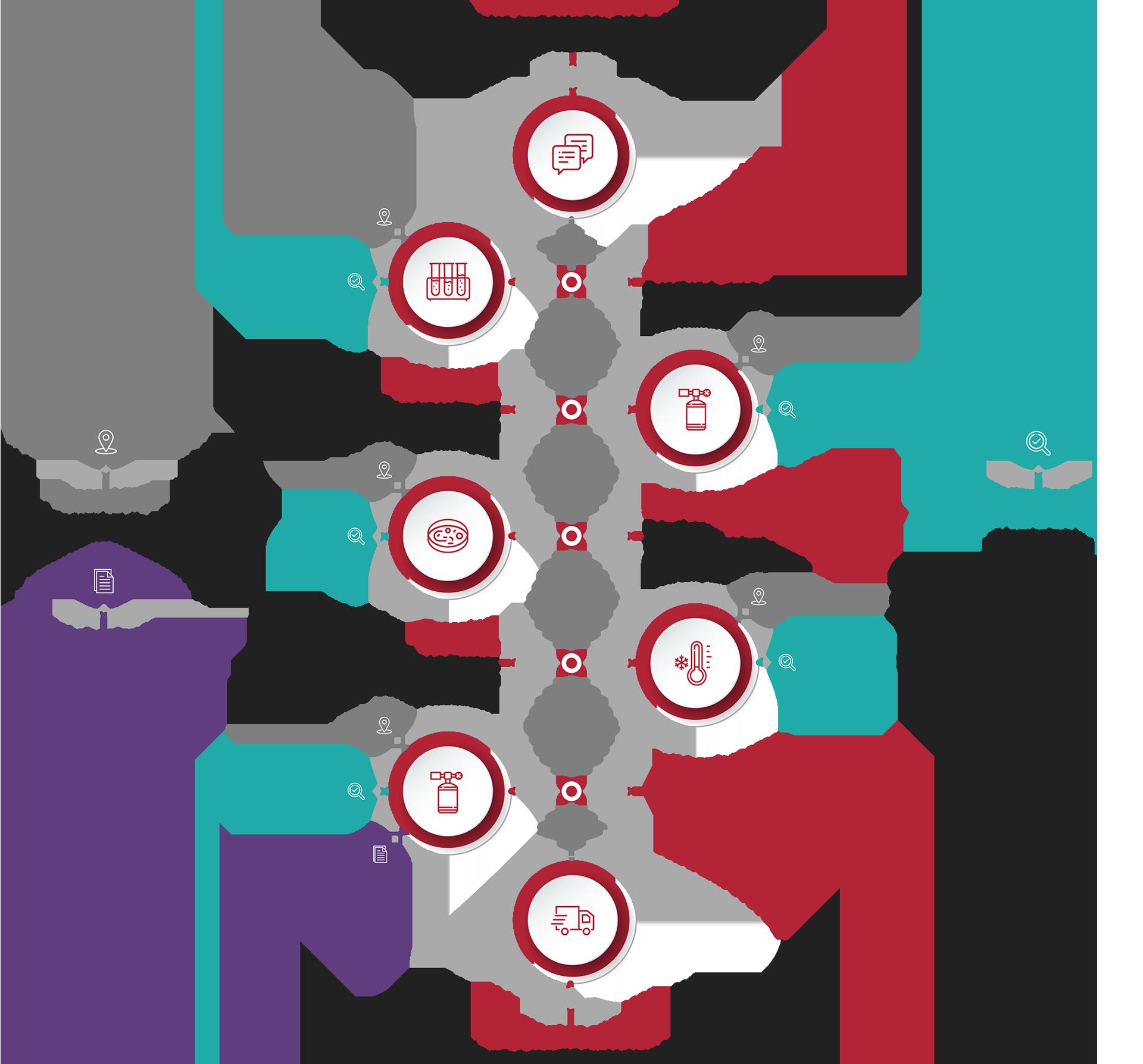 human-cell-design-schema-design-process-web